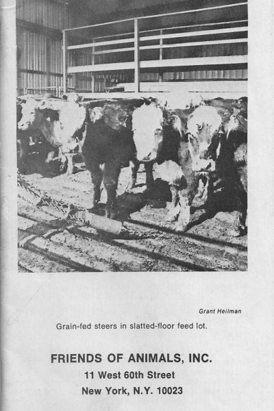 Factory Farming Brochure